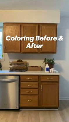 Diy Kitchen Remodel, Diy Kitchen Cabinets, Kitchen Cabinet Colors, Home Decor Kitchen, Kitchen Interior, Home Kitchens, Dark Cabinets, Kitchen Ideas, Kitchen Remodeling