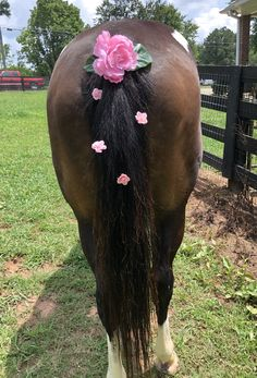 Pink flowers in tail Horse Braiding, Tail Braids, Horse Mane, Flower Braids, Horse Costumes, Mane N Tail, Horse Stuff, Rear View, Beautiful Horses