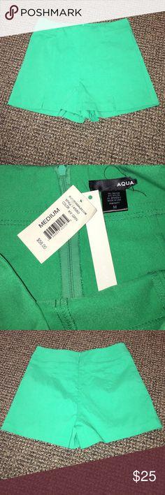 High-waisted shorts Never worn! High waisted green shorts. 75% rayon, 21% nylon, 4% spandex. Zipper back. Aqua Shorts