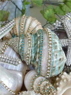 Awesome jeweled seashells
