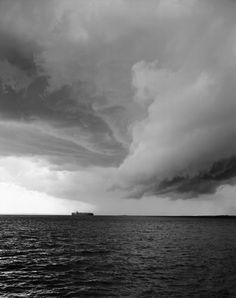 Mitch Epstein, New York Trees, Rocks & Clouds - L'Œil de la photographie