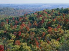 A place in the Ozarks - Mark Twain National Forest.