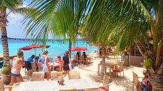 Top tien hotspots in curacao Beautiful Islands, Beautiful Places, Beach Club, Beach Day, Caribbean, Bali, Places To Visit, Restaurant, Outdoor Decor