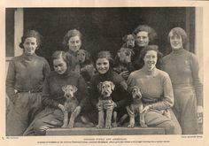 Airedale puppies and students at Ardross Training College, Ashford, Middlesex.