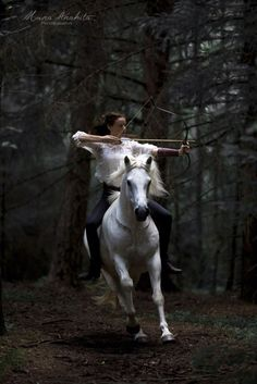 Cool horse and woman archer.