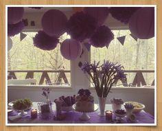 Violet Leapfrog My Pal Birthday Party