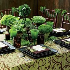 wide variety of grouped greens, kale, bakerfern, Ivy