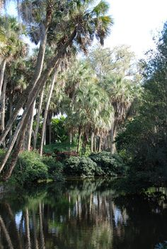 The moat is truly captivating with its garden reflections. Bok Tower Gardens, FL, USA