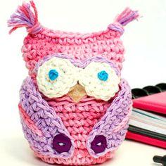 Owl Obsessed Crochet Cozy | AllFreeCrochet.com