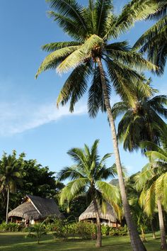 Sofitel Ia Ora Moorea Beach Resort / Luxury Garden Bungalow  - Pacific For Less