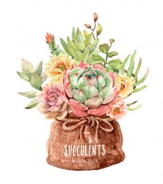 Watercolor cacti and succulents in pot bag sack Premium Vector Watercolor Succulents, Watercolor Cactus, Watercolor Paintings, Succulents Art, Botanical Illustration, Watercolor Illustration, Cactus Art, Cactus Flower, Tropical Flowers