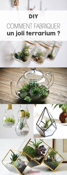 terrarium madness invites you in your decor with this DIY workshop . The terrarium madness invites you in your decor with this DIY workshop .The terrarium madness invites you in your decor with this DIY workshop . Terrariums Diy, How To Make Terrariums, Diy Décoration, Easy Diy, Diy Jardim, Wie Macht Man, Creation Deco, Diy Workshop, Deco Floral