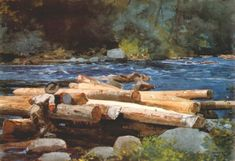 Hudson River - Winslow Homer