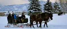 Enjoy Views of Heber Valley, UT While Enjoying a Delightful Sleigh Ride Outdoor Skating Rink, Snowmobile Tours, Utah Vacation, Horse Drawn Wagon, Dashing Through The Snow, Romantic Destinations, Winter Travel, Stunning View, Horseback Riding