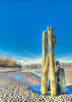 A frosty winter day on the Fraser river, Barnston Island, Vancouver, BC, Canada