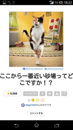 livedoor.4.blogimg.jp nwknews imgs 9 4 9409fda3.png