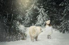 20фотографий, после которых выполюбите снег