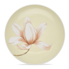 Noritake - Colorwave Collection - Floral Accent/Luncheon Plate, 'Little Gem', White, 8 1/4""