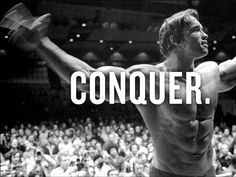 Find the best Arnold Schwarzenegger Conquer Wallpaper on GetWallpapers. We have background pictures for you! Motivational Videos, Inspirational Videos, Arnold Schwarzenegger Conquer, Arnold Wallpaper, Big Chest Workout, Punch In The Face, Sport Inspiration, Gif Of The Day, Learn To Love