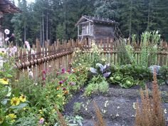 Scrap Wood Fence - good example of how making do can have a beautiful result   kitchen garden   jardin potager   Bauerngarten