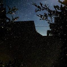 The Constellations of Winter, Katrin Koenning