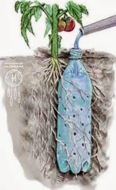 Ma poubelle est un Jardin: Special recyclage, encore les bouteilles en plastiques