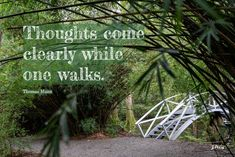 Thoughts come clearly. Charleston, SC. #walkingquote. Joan Perry