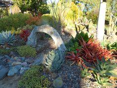 Gardens By Jenise: January 2012