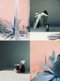 My Weekend Mood Board: Botanical inspiro - Eclectic Trends     Images via Janneke Luursema