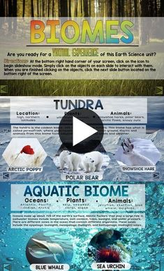 """I would use this when introducing biomes to allow students to explore independently to """"discover"""" instead of just doing explicit teaching. Third Grade Science, Middle School Science, Elementary Science, Science Classroom, Teaching Science, Science Education, Life Science, Physical Science, Earth Science Lessons"""