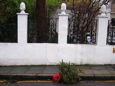 moroccan christmas trees | Christmas Tree Carcass - Barnsbury Street