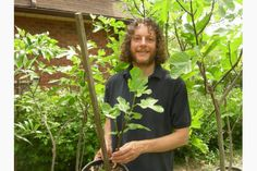 Yes, you can grow figs in Ontario and it's not that hard