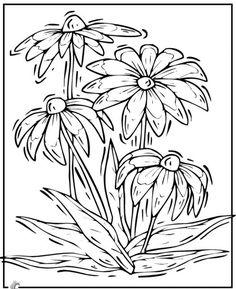 простые цветы рисунки