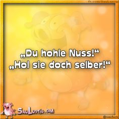 Du hohle Nuss