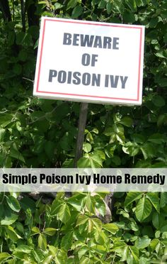 Homemade poison ivy remedy plus Dr. Oz's homemade remedy for mosquito bites.