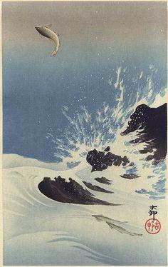 Leaping Trout by Ohara Koson (tanzaku, 1910)