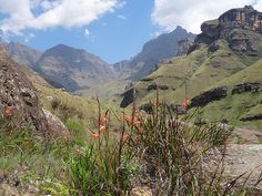 Drakensberge near Underberg, Kwa-Zulu Natal, South Africa. Beautiful Places To Visit, Oh The Places You'll Go, Midland Meander, Earth And Solar System, Kwazulu Natal, Holiday Time, Source Of Inspiration, Rock Climbing, Clay Crafts