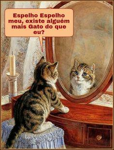 """""""Um gato se mostra sempre bonito; sugestionando idéias de luxo, limpeza, e prazeres..."""" (Charles Baudelaire)                                                                                                                                                      Más"""