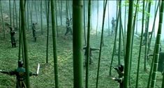 #ZhangYimou #china #cinema #movies #chinesemovies #bamboo #wuxia #warrior Maggie Cheung, House Of Flying Daggers, Takeshi Kaneshiro, Movies And Series, Chinese Movies, Actors, The Last Airbender, Film Movie, Movies Showing