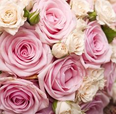 Pink roses are the perfect flower for any wedding whether as part of the bouquet or in a floral arrangment Wedding Favours, Wedding Vendors, Wedding Blog, Dream Wedding, Wedding Ideas, Wedding Things, Wedding Cake, Wedding Stuff, Weddings