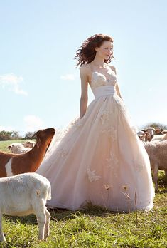 Brides.com: Rustic Wedding Dresses. Wtoo Brides' enchanting champagne tulle-and-taffeta ball gown shimmers with Swarovski crystal-embellished lace appliqués.Dress, $1,575, Wtoo by Watters. Necklace, In2 Design.