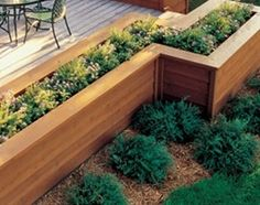 Love this idea to landscape around deck and add different heights and interest.Grow herbs for easy access for cooking mixed with flowers.