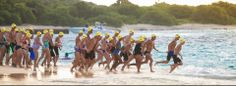 St. Croix Coral Reef Swim Race | St. Croix Coral Reef Swim Race Holistic Care, Health Fitness, Coral, Swimming, Racing, Play, Swim, Auto Racing, Lace