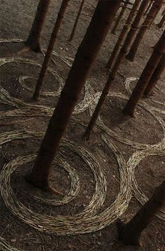 Swiss environmental artist Sylvain Meyer made patterns around trees with pine needles