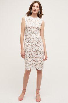 Lace Garden Pencil Dress - anthropologie.com
