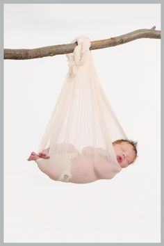Newborn photo from http://www.frostedproductions.com