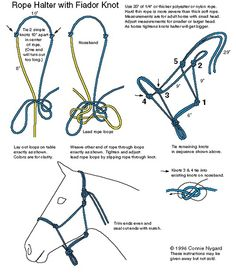 DIY instrucions to make a rope halter