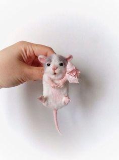 Купить или заказать Авторская брошь'Мышонок'карманный в интернет-магазине на Ярмарке Мастеров. Авторская брошь мышонок выполнена в технике сухого валяния из 100%шерсти,задняя часть изделия отделана натуральной кожей,брошь пропитана сальвитозой,лапки закреплены акриловый лаком...коробка расписана акрилом.…