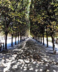 PARIS: Jardin du Palais Royal. A park near the Louvre