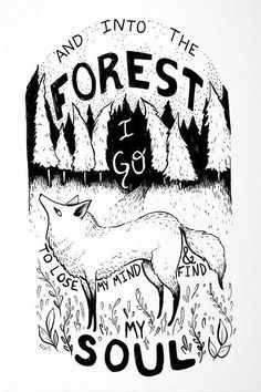 And into the forest I go, to lose my mind and find my soul Shining Tears, A Silent Voice, Lose My Mind, Illustrations, Cool Stuff, Dark Art, Art Inspo, Fantasy Art, Cool Art
